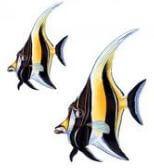 aqua-decals-angel-fish