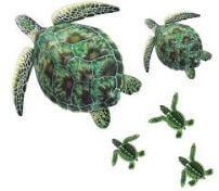 aqua decals turtles