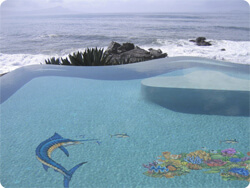 Aqua Art for Pools - alternatives to expensive Tile Mosaics for pools