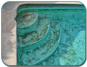 Stop Winter Pool Stains Intheswim Pool Blog