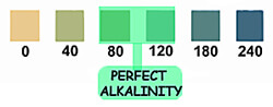 perfect-pool-alkalinity-2