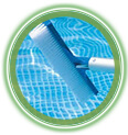 brush-the-pool-