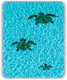 o-3-turtles