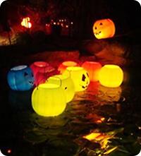 Halloween Swimming Pools Intheswim Pool Blog