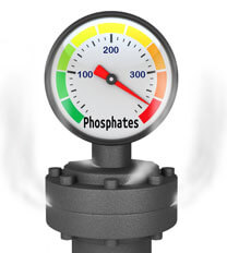 Pool Phosphate Problems Intheswim Pool Blog