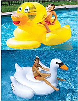 inflatable-duck-and-swan