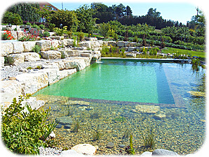 The Benefits Of A Natural Swimming Pool Intheswim Pool Blog