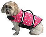 dog-in-life-vest