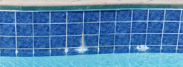 efflorescence-on-pool-tile-photo-by-troublefreepools