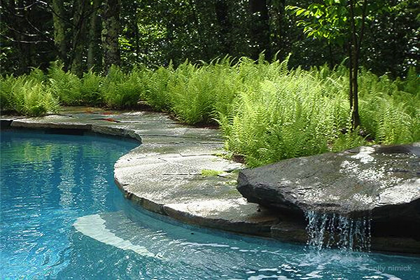 Shepard Butler Landscaping. Pool Design Style: Tropical
