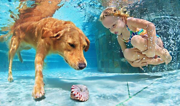 girl-and-dog-underwater-pool-istk