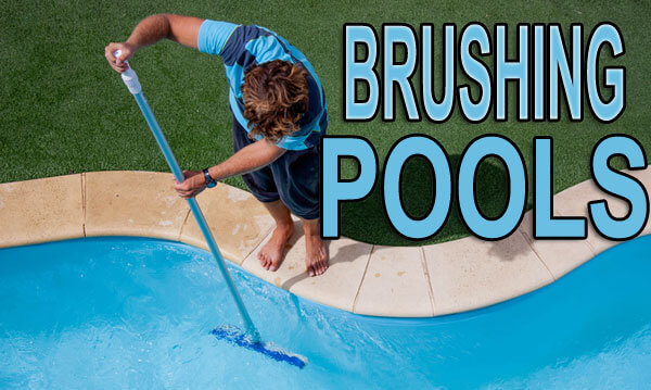 Brushing Pools - how, why, what and when